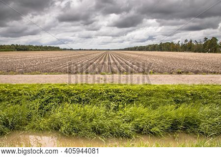 Landscape View Of Arable Land Farmland After Harvesting The Crops. Bant, Flevoland Province, The Net