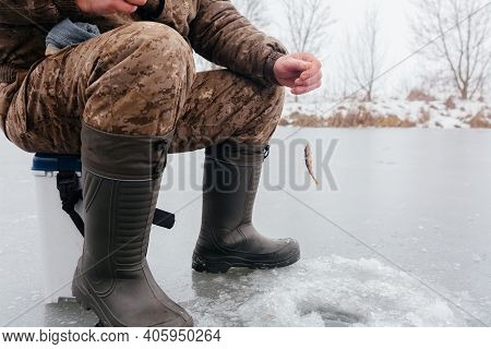 Man Pulling Fish From The Ice Hole While Ice Fishing. Pulling Caught Fish From A Hole In The Winter