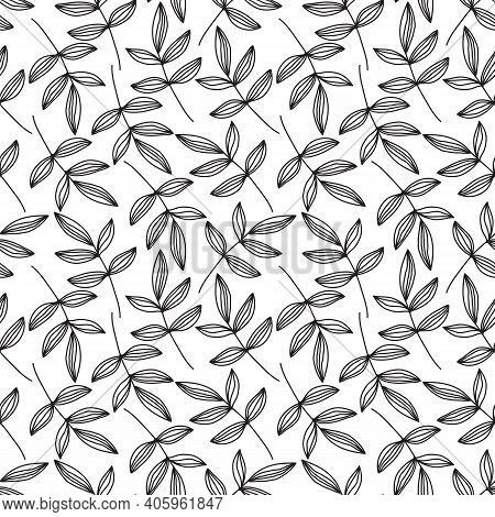 Seamless Floral Pattern Of Hand Drawn Black Branches And Leaves On A White Background. Vector Sketch