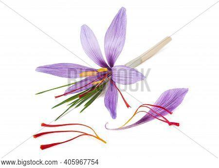 Saffron Petal  Stigmas And  Flowers Isolated On White Background