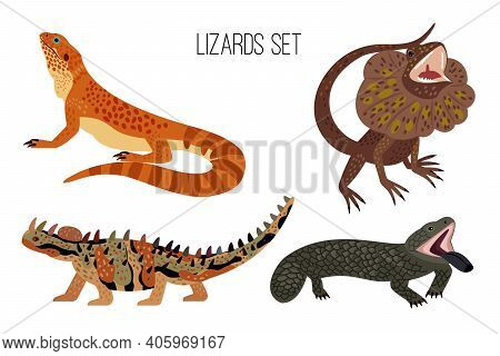Colorful Lizards. Cartoon Crawling Australian Reptiles With Tail, Exotic Animals Of Zoo, Vector Illu
