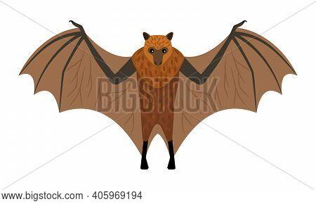 Flying Fox. Cartoon Exotic Night Animal, Intimidating Creature, Symbol Of Fear, Vector Illustration