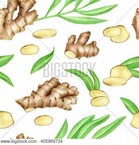 Ginger Root Seamless Pattern With Slices And Leaves. Hand Drawn Watercolor Ginger Rhizome Isolated O