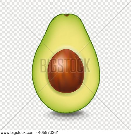 Realistic Avocado With White Background With Gradient Mesh, Vector Illustration