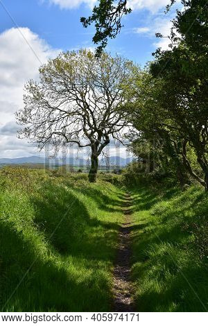 Dirt Foot Path That Winds Through The English Countryside.