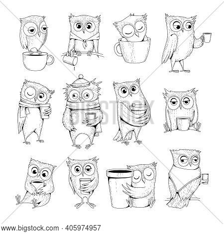 Owl Characters. Funny Wild Night Birds With Cup Of Tea Or Coffee Sleeping Owls Vector Doodles. Illus
