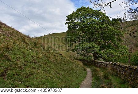 Stunning Rugged Dirt Hiking Trail Through A Rural Area.