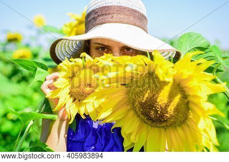 Small Girl Rustic Style Hiding Behind Sunflowers, Hide And Seek