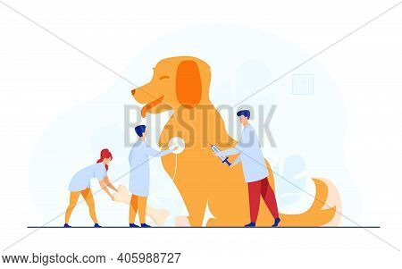 Tiny Doctors Caring Dog In Vet Office Flat Vector Illustration. Modern Animal Clinic Or Hospital. An