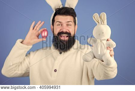Easter Symbol Concept. Hipster Cute Bunny Long Ears Blue Background. Easter Bunny. Funny Bunny With