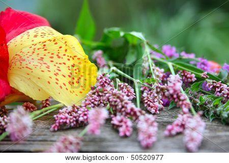 Season flowers