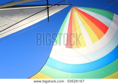 The Wind Has Filled Colorful Spinnaker Sail