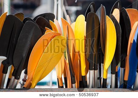 Coloured Paddles
