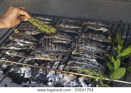 Oiling fresh Mediterranean fishes on BBQ