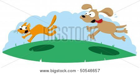 Funny Dog Hounting A Cat