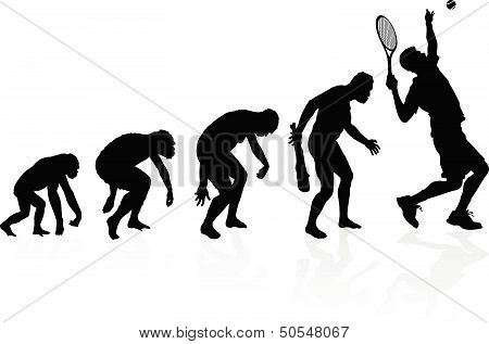 illustration of depicting the evolution of a male from ape to man to Tennis player in silhouette. poster
