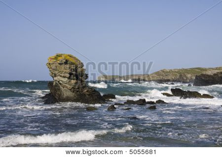 A Small Cove