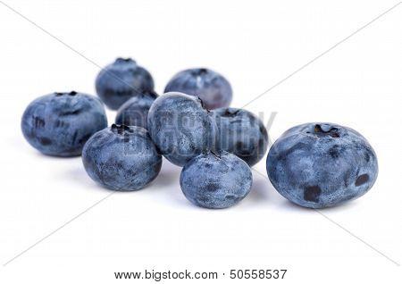 Few bilberries