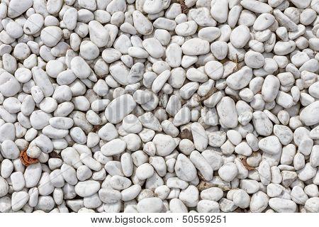 White Pebbles In Plan View