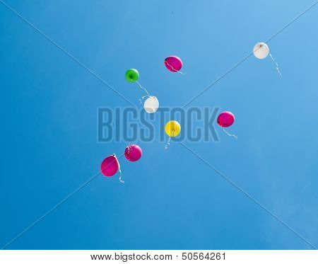 Colorful Balloons On The Blue Sky