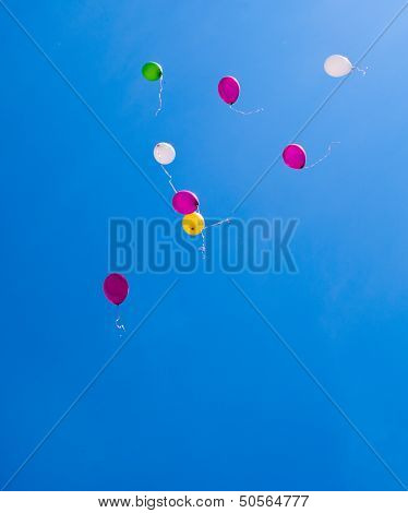 Balloons On The Blue Sky