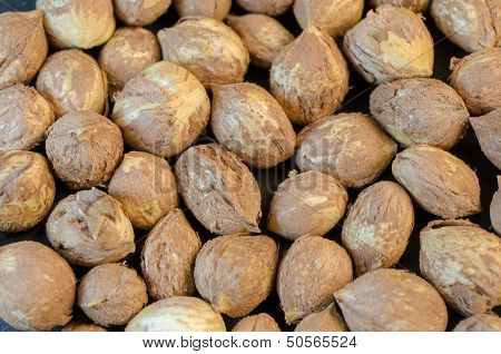 Hazelnuts without shells-background