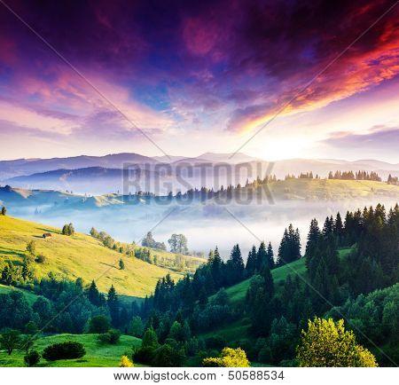 Majestic mountain landscape with colorful cloud. Dramatic overcast sky. Carpathian, Ukraine, Europe. Beauty world.