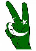 Peace Sign of the Pakistani flag on a white background poster