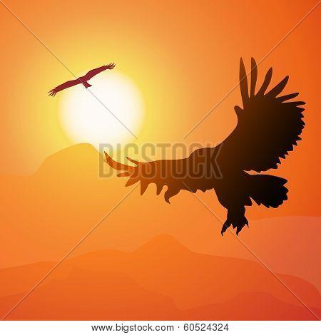 Square Cartoon Illustration Of Soaring Eagle And Sunset.