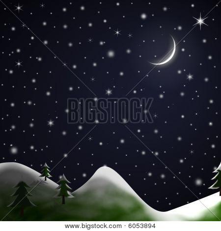 Christmas Scene - Starry Snowy Night