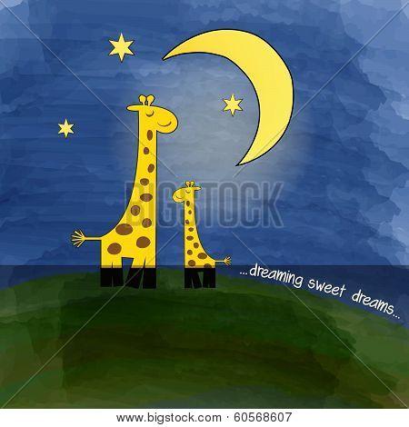Mother-giraffe And Baby-giraffe At Night