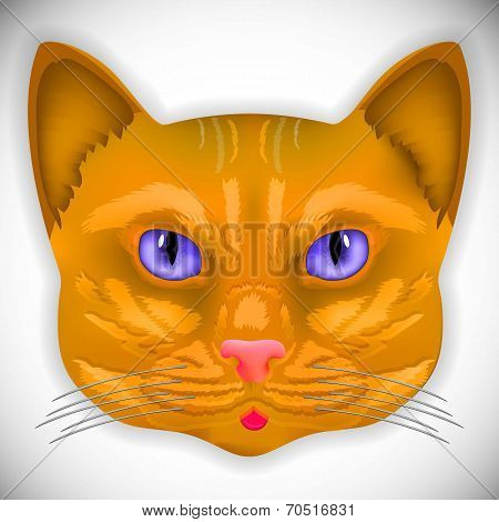 cat face eyes vector kitten bow hair facial portrait poster