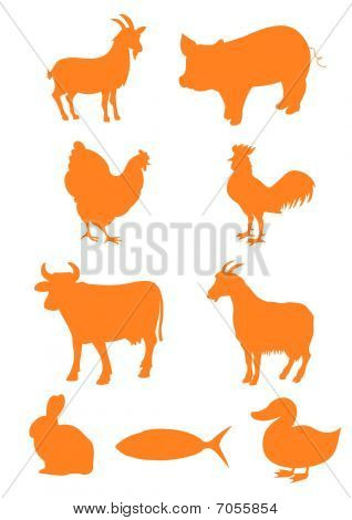 Set of farm animal shapes
