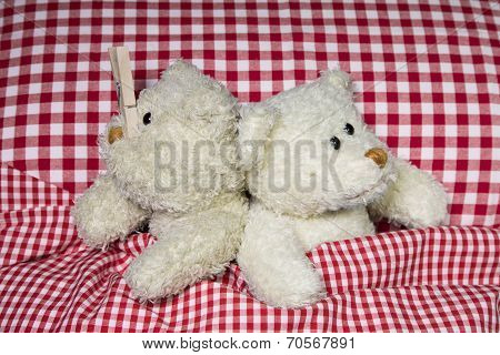 Married Teddy Bears In Bed: Sleeping Problems With A Snorer.