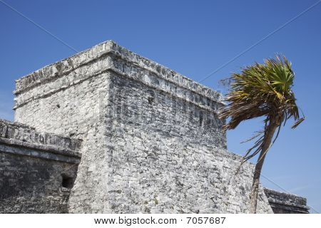 Mayan Observation Tower