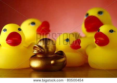 Rubber duckies and golden rubber duckling