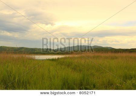 Summer Morning On Lake