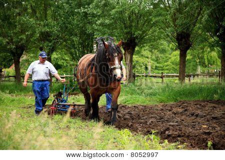 Plough The Land Farmer