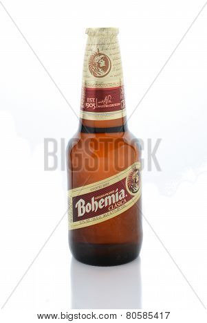Bohemia Beer On White