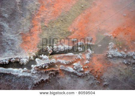 Hot Spring Orange Background