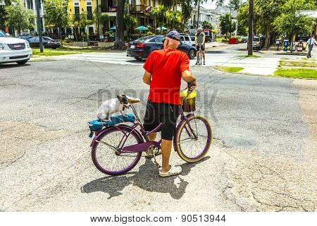 Man On Bike With His Dog Cycles Along The Saint Charles Avenue