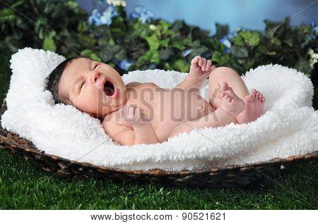 Tiny Baby, Big Yawn
