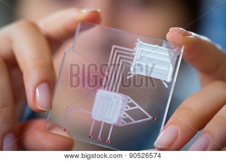 A lab on chip is device integrates several laboratory processes in one device, in woman hand