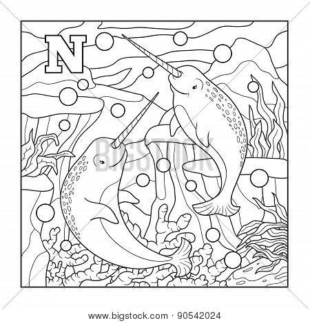 Coloring Book (narwhal), Colorless Illustration (letter N)