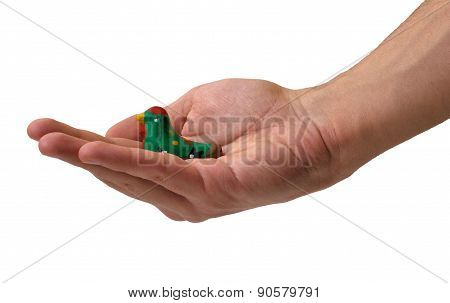 Hand Holding A Toy Bird