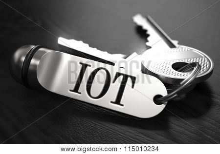 IOT Concept. Keys with Keyring.