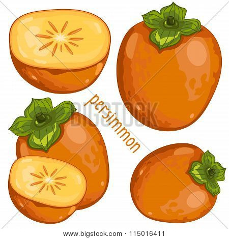 Persimmon Isolated, Vector.