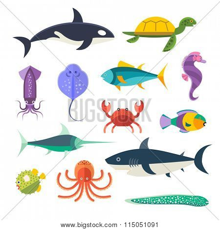 Vector set of sea marine fish and animals. Shark, squid, octopus, sawfish, hedgehog, saw, crab, dolphin, killer whale, whale, clownfish, sea horse, turtle, stingray, moray. Sea wild fish collection