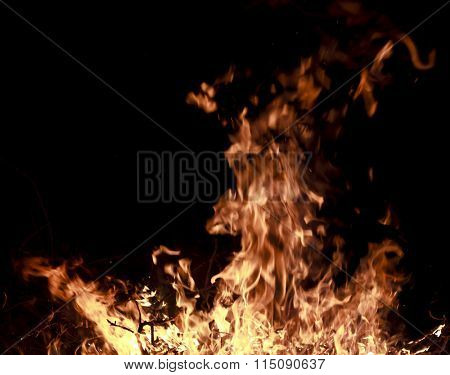 Fire, fire flames in black background