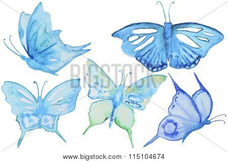 Set of watercolor butterfly